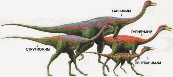 Динозавр самый быстрый