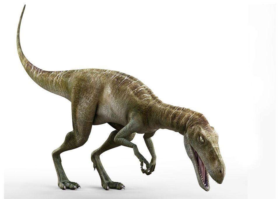 Ставрикозавр, фото ставрикозавр