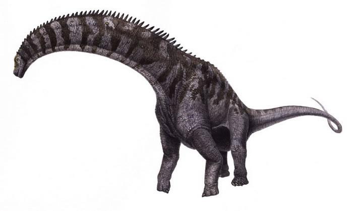 Гипсилозавр фото
