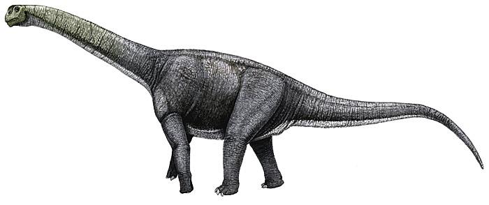 Арагозавр