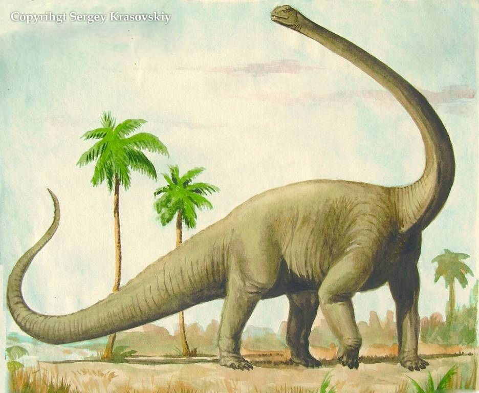 Как выглядит гигантозавр