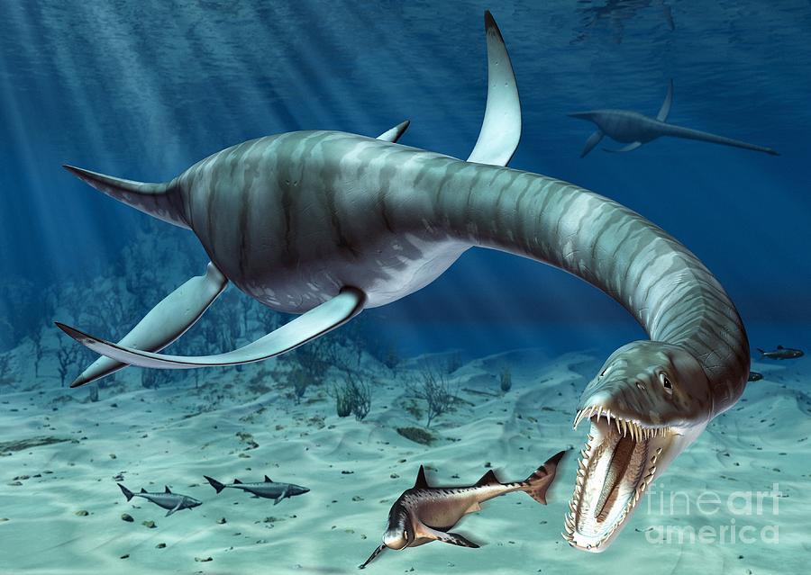 Плезиозавр фото