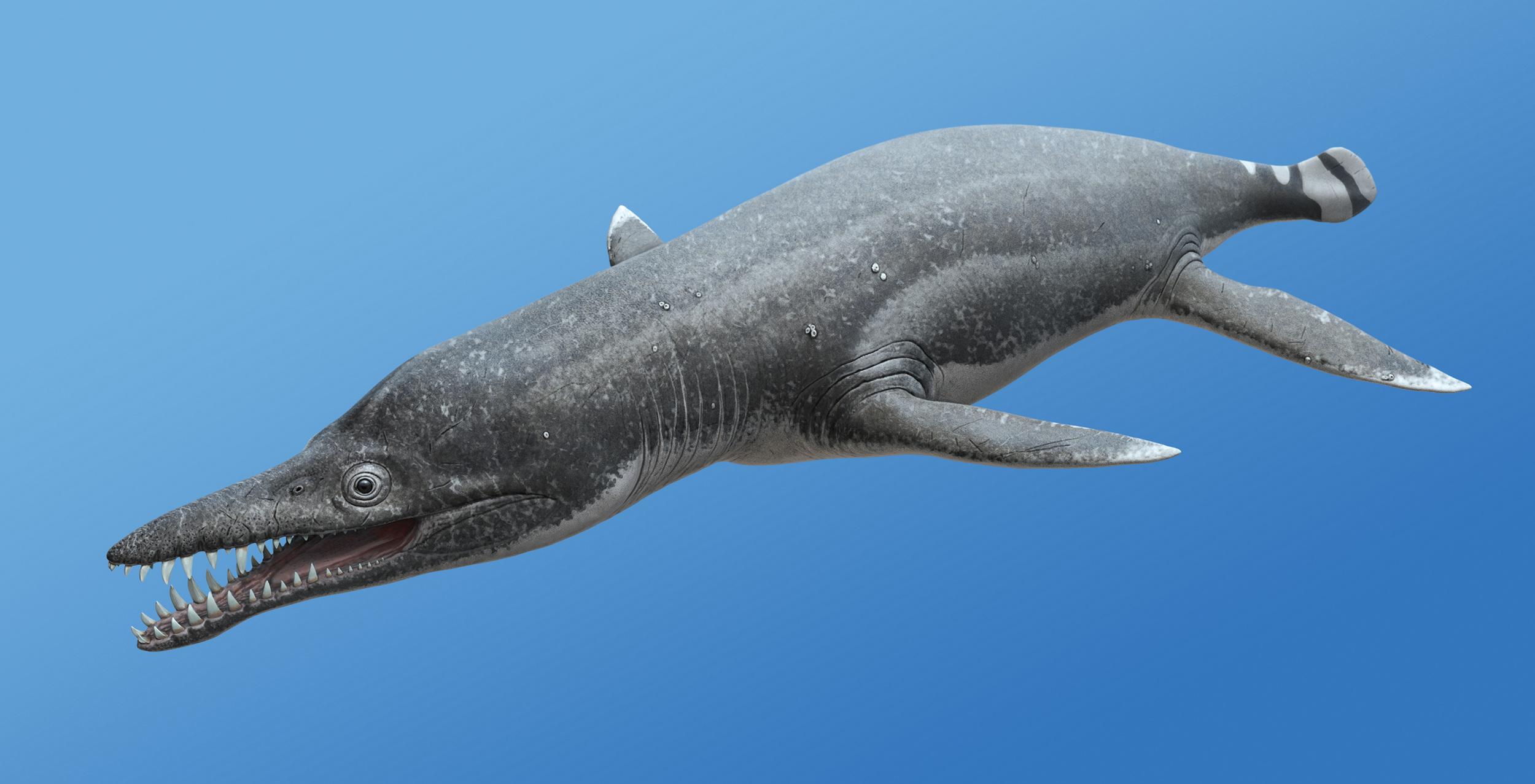 Плиозавр фото