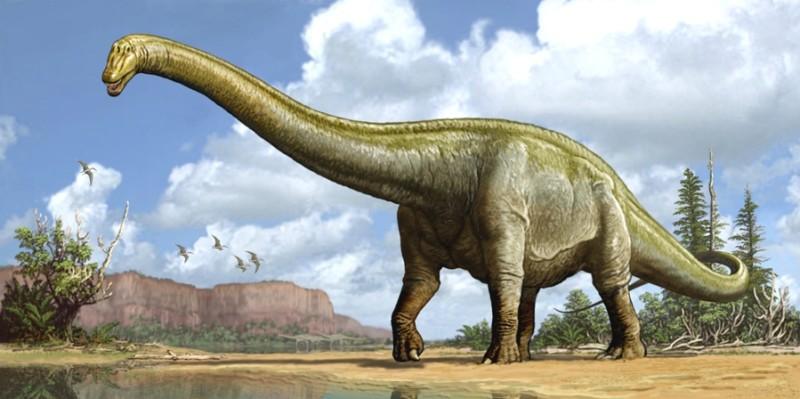 Диплодок динозавр фото