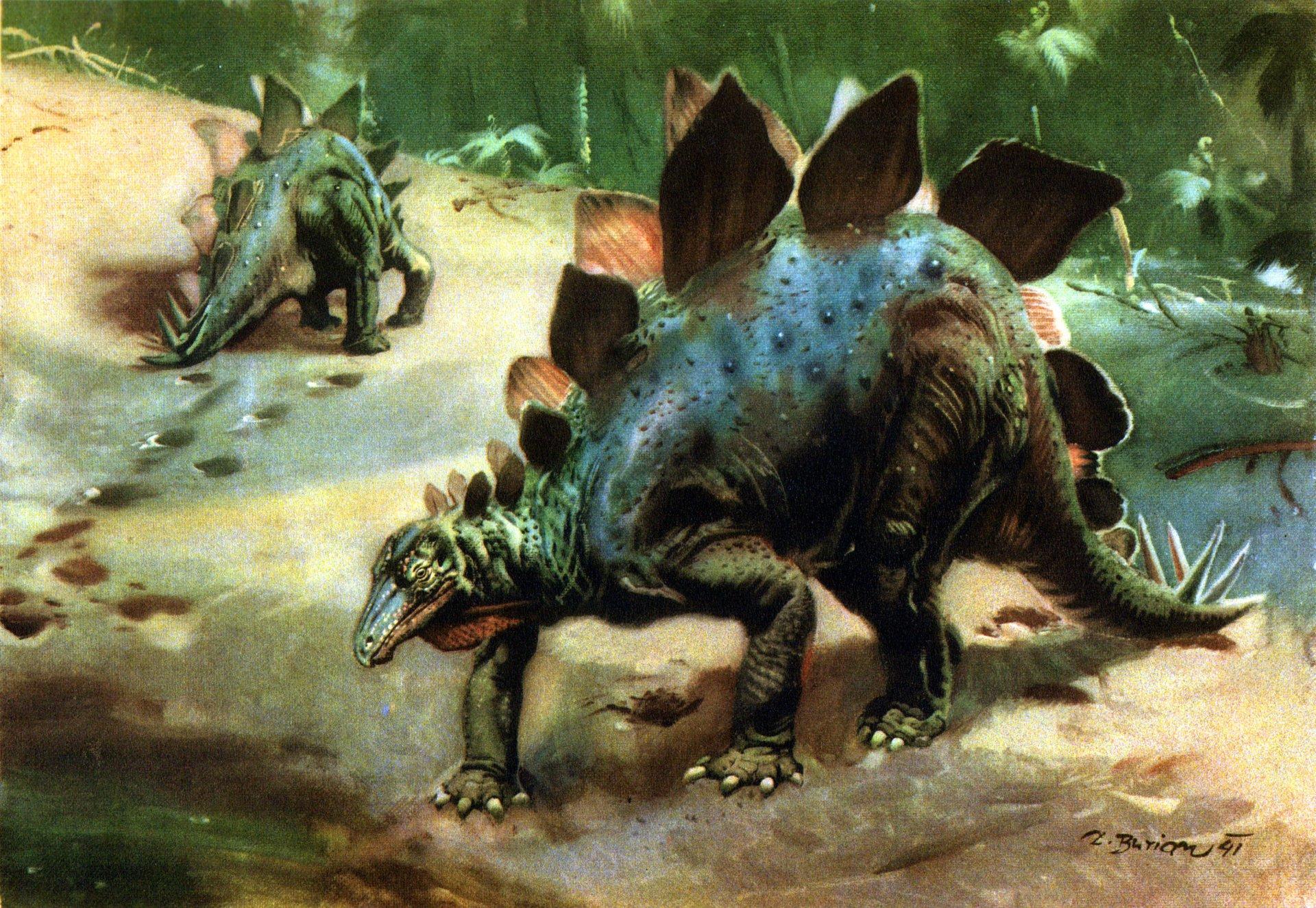 Стегозавр картинки, описание стегозавра