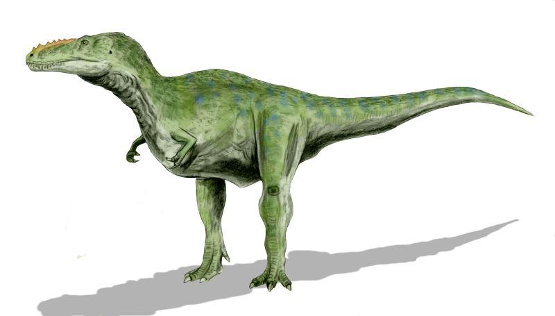 Динозавр 4 буквы сканворд