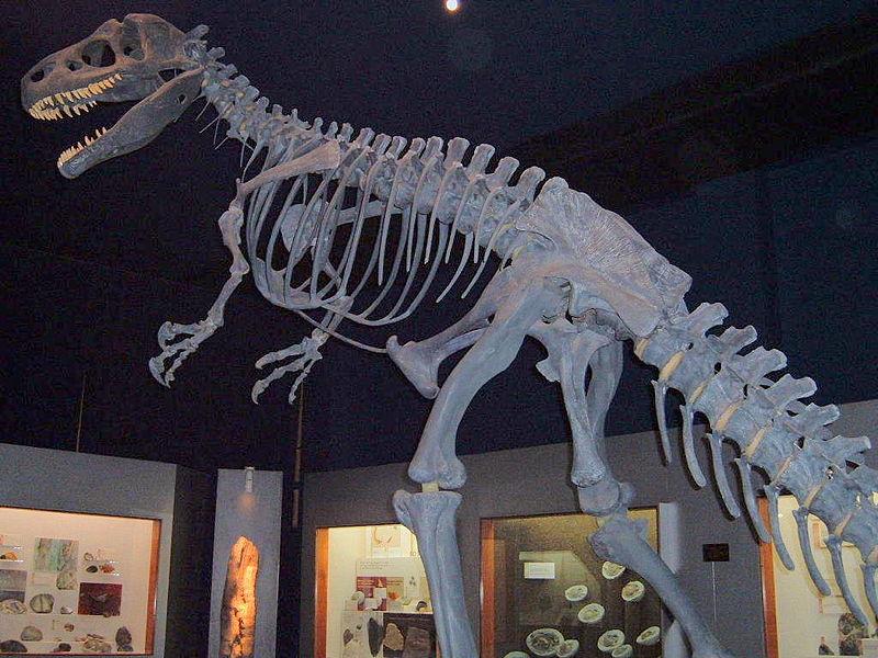 Карнозавр, карнозавр фото