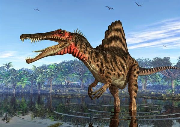 Динозавр с гребнем на спине название