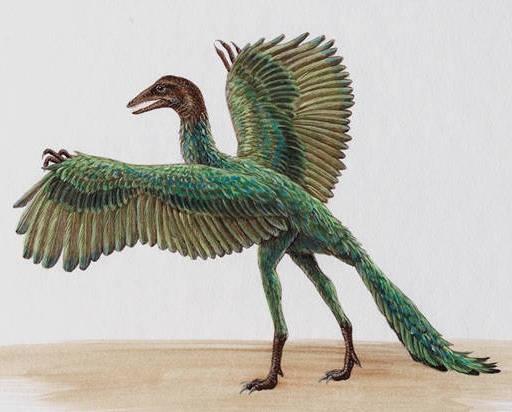 Динозавры летающие картинки