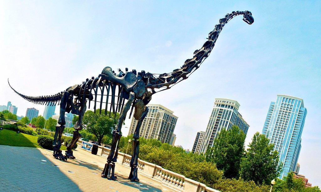 Скелет брахиозавра