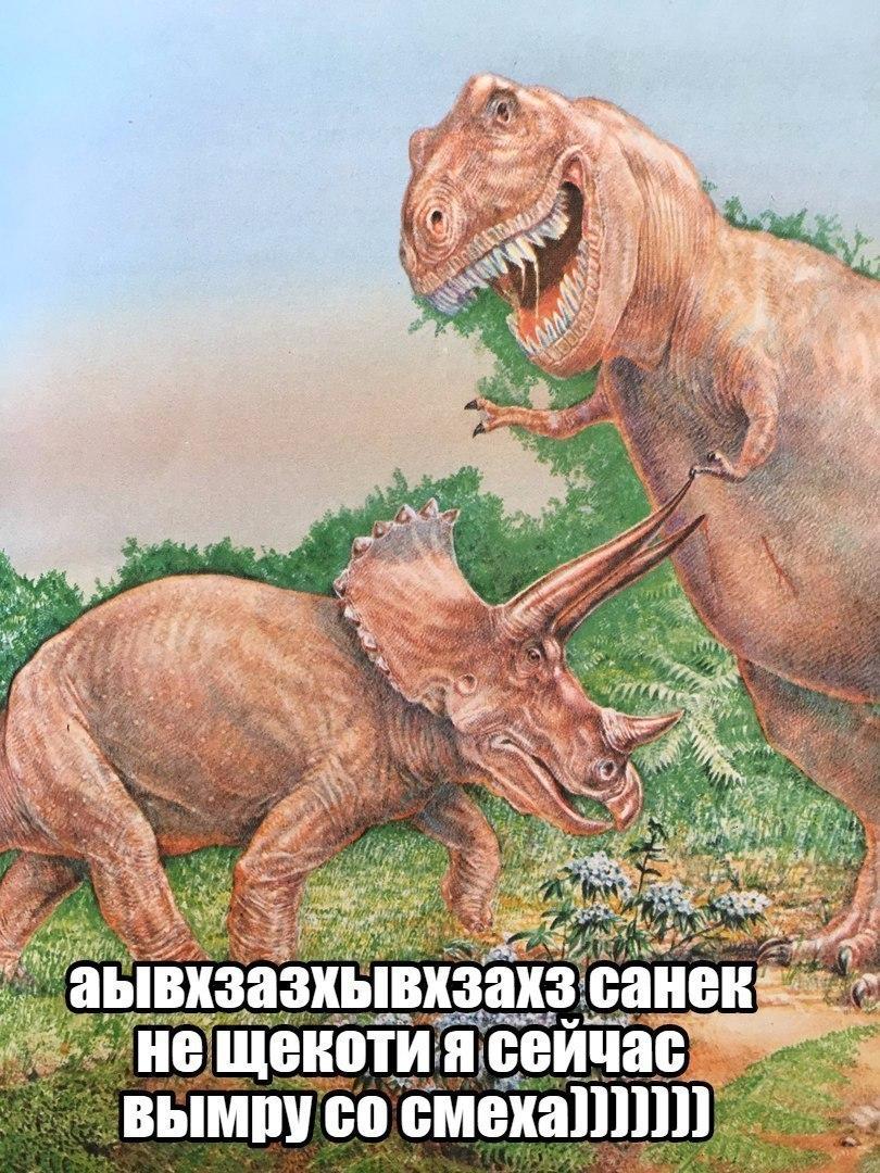 Большие букеты, приколы про динозавров картинки