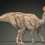 какие динозавры жили в россии, какие динозавры жили на территории россии