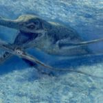 Плавающие динозавры названия и фото