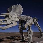 Раскопки динозавров игра