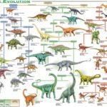 Эволюция динозавров