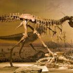 Игры раскапывать динозавров