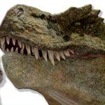 Кот семен рассказывает про динозавров
