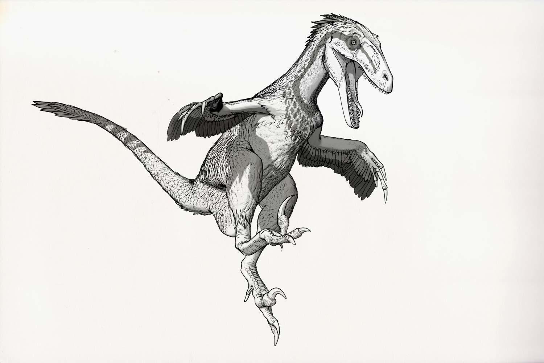 динозавр рисунки карандашом чтобы объяснять